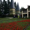 小瑞士花園-小瑞士花園照片