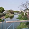 鹽水橋南老街-興隆橋上所見風光照片