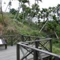 九份二山震災紀念園區-爆發點附近照片