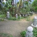 九份二山震災紀念園區-往氣爆點步道2照片