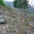 九份二山震災紀念園區-氣爆點(爆發點)5照片
