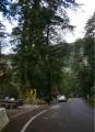 南橫檜谷照片