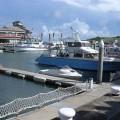 後壁湖碼頭(後壁湖漁港, 後壁湖遊艇碼頭)照片