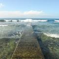 柴口潛水區-柴口潛水區照片