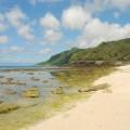 大白沙潛水區照片