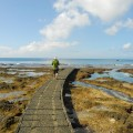 大白沙潛水區-大白沙潛水區照片
