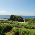 帆船鼻草原(綠島地毯)-帆船鼻草原(綠島地毯)照片