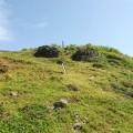 帆船鼻草原(綠島地毯)