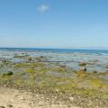 石朗潛水區-石朗潛水區照片