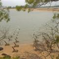 湖下海堤-湖下海堤照片