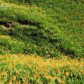 赤科山-赤科山照片