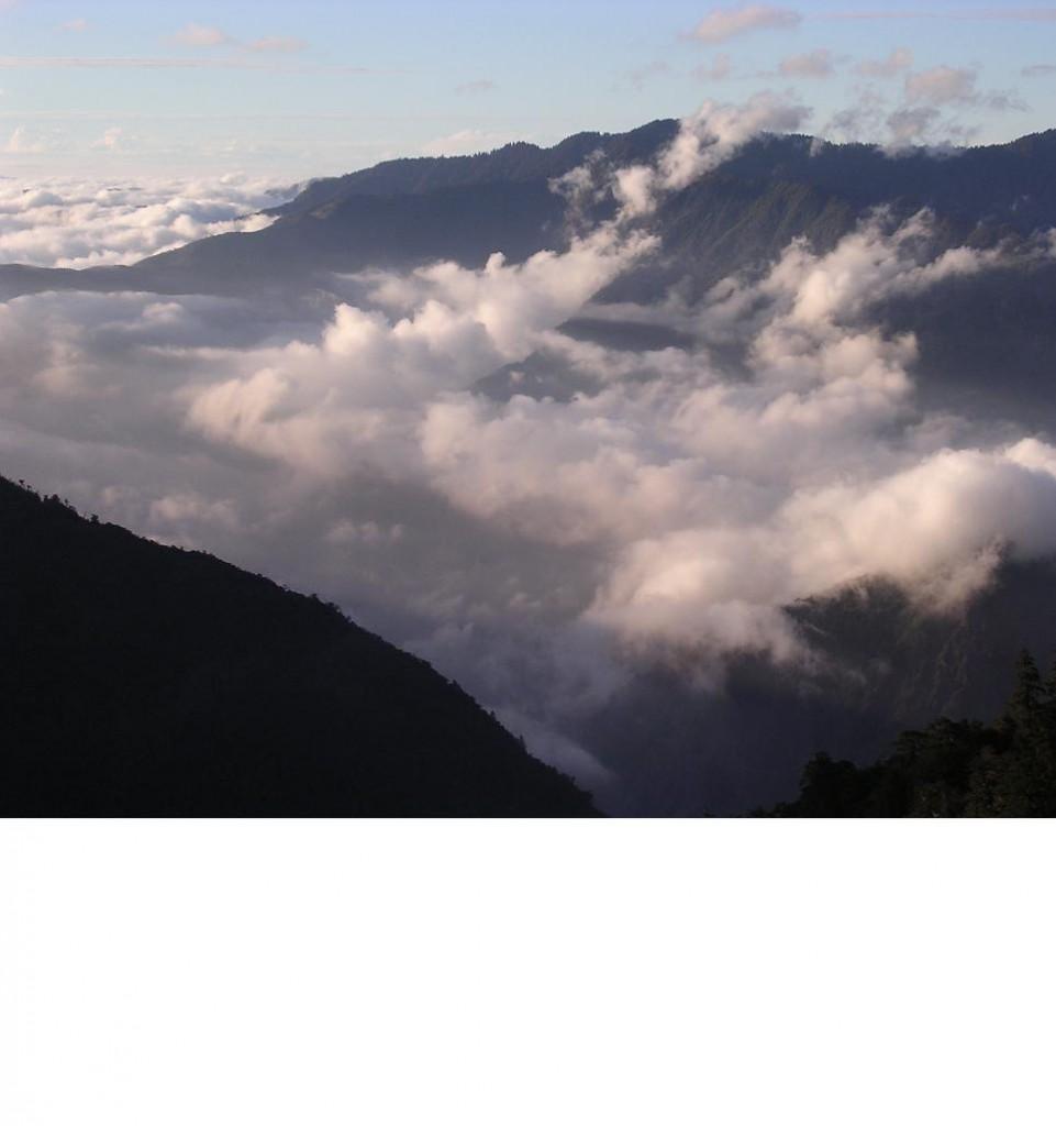 南橫雲海主照片