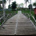 台南永康公園-台南永康公園照片