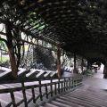 玉山寶光聖堂-迴廊照片