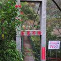 草嶺風景區-蓬萊吊橋照片