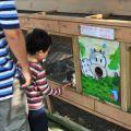 綠盈牧場-餵食兔子照片