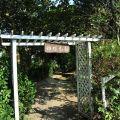綠盈牧場-蝴蝶花園照片