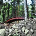 奮瑞步道(奮瑞古道)-步道上的圓拱木橋照片
