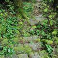 奮瑞步道(奮瑞古道)-石階可能因長有青苔而濕滑宜小心行走照片