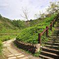 牛埔農塘(牛埔泥岩水土保持教學園區)
