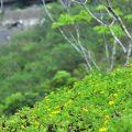 牛埔農塘(牛埔泥岩水土保持教學園區)-牛埔農塘(牛埔泥岩水土保持教學園區)照片