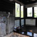 澐水溪溫泉(暫停營業) (台灣美人湯)-室內湯屋照片