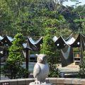澐水溪溫泉(暫停營業) (台灣美人湯)-露天池一景照片