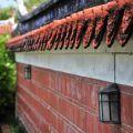 吳鳳紀念公園-矮牆照片