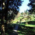 沼平公園-公園一景2照片