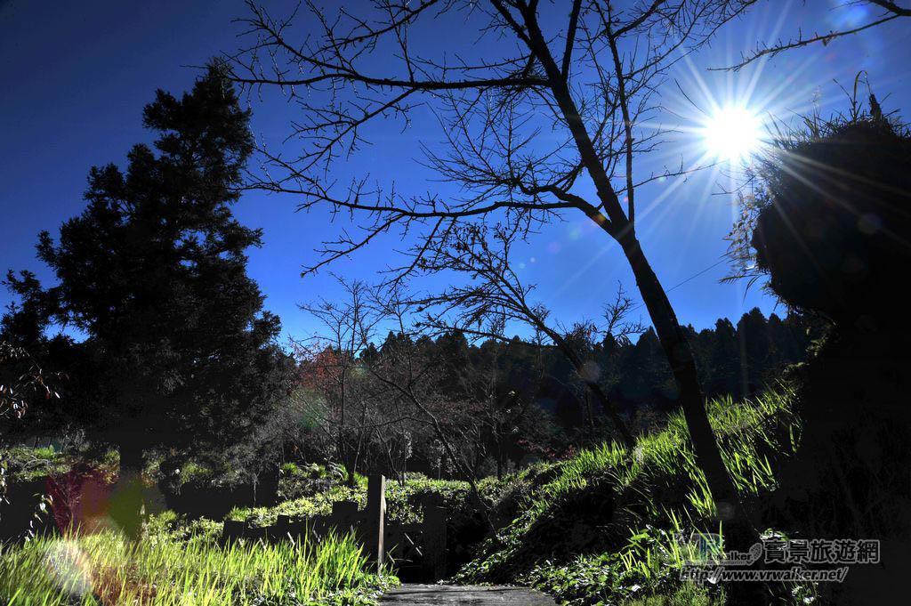 沼平公園主照片