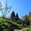 沼平公園-公園一景照片