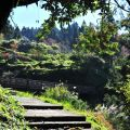 沼平公園-上去就是沼平車站了照片