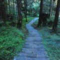 祝山觀日步道-祝山觀日步道照片