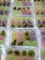 九份黃媽媽蒟蒻專賣店-晶瑩剔透的蒟蒻產品照片