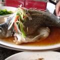 龍船山莊-清蒸鳟魚照片