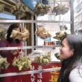 素粽-香積廚坊-全素素粽子