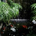 台南市 歐加里餐廳 -台南市 歐加里餐廳 照片