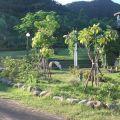 優生美地休憩農場-四周景色照片