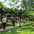 獨角仙休閒農場-園區步道照片