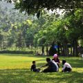 獨角仙休閒農場-園區樹木茂密照片
