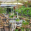 山海觀休閒農園(山海觀咖啡莊園)-山海觀休閒農園(山海觀咖啡莊園)照片