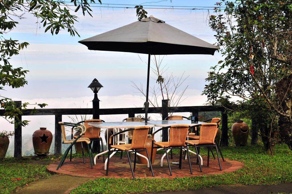 山海觀休閒農園(山海觀咖啡莊園)主照片
