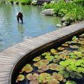 立川漁場-立川漁場照片
