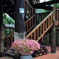 阿比加精品咖啡園-阿比加精品咖啡園照片