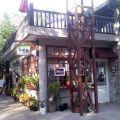 及林春咖啡館-及林春咖啡館照片