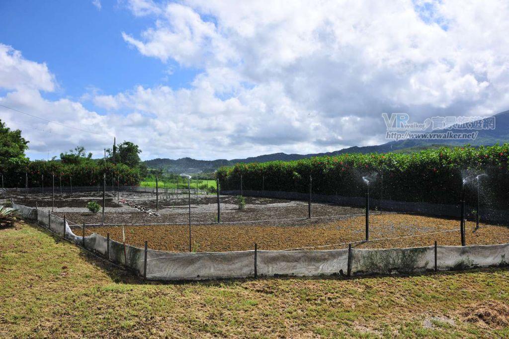 里德社區發展協會(滿州生態導覽)主照片