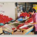 永豐農場-包裝過程照片