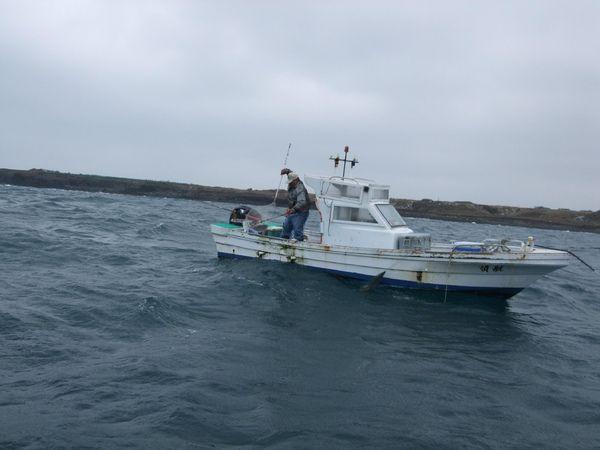 泰椿漁行主照片