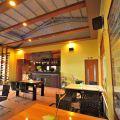 綠光森林-複合式音樂餐廳-綠光森林-複合式音樂餐廳照片