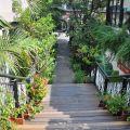 四季春曉庭園餐廳(已結束營業)-往二樓餐廳的通道照片